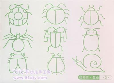 各种小昆虫的简笔画