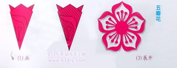 五瓣花剪纸纹样 五角折剪