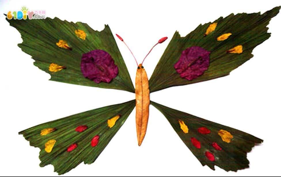 蝴蝶树叶贴画作品图片 2