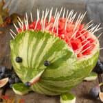 西瓜皮创意动物造型刺猬DIY