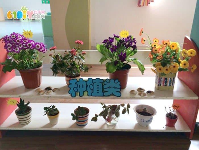 幼儿园自然角的创设_自然角植物角_巧巧手幼儿手工网