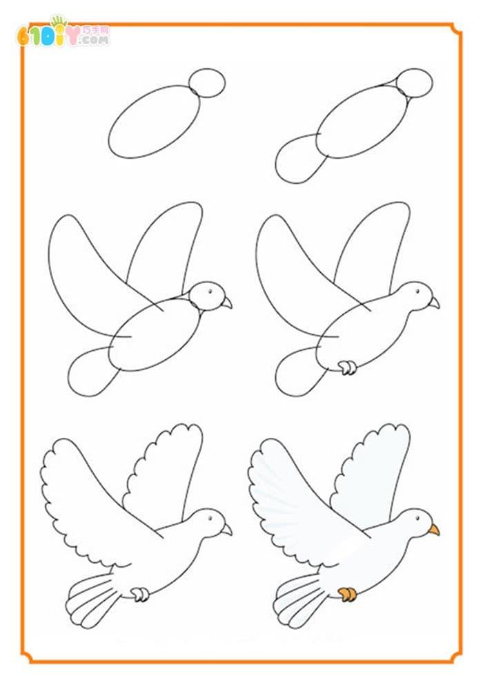 国庆节简笔画教程:怎样画和平鸽